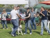 addestramento-cani-open-day-203