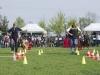 addestramento-cani-open-day-102