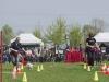 addestramento-cani-open-day-134