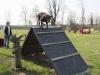 addestramento-cani-open-day-2012-10