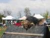 addestramento-cani-open-day-2012-35
