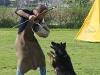 addestramento-cani-open-day-2012-40