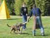addestramento-cani-open-day-2012-44