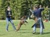 addestramento-cani-open-day-2012-45