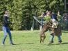 addestramento-cani-open-day-2012-46