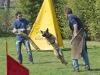 addestramento-cani-open-day-2012-48