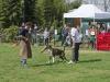 addestramento-cani-open-day-2012-57