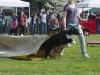 addestramento-cani-open-day-96