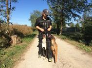 addestramento cani milano 2