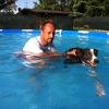 hydra-greyhound