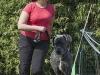 addestramento-cani-open-day-197