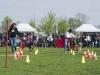 addestramento-cani-open-day-107