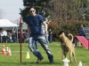 addestramento-cani-open-day-114
