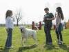 addestramento-cani-open-day-2012-15