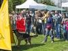 addestramento-cani-open-day-2012-39