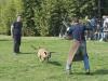 addestramento-cani-open-day-2012-49