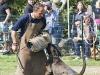 addestramento-cani-open-day-2012-64