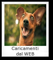 caricamenti-WEB